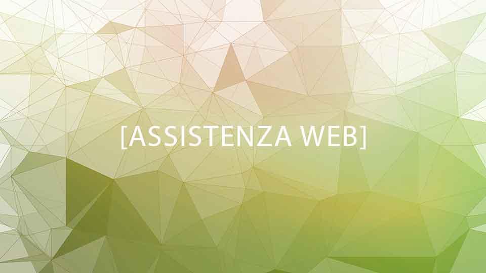 Assistenza Web